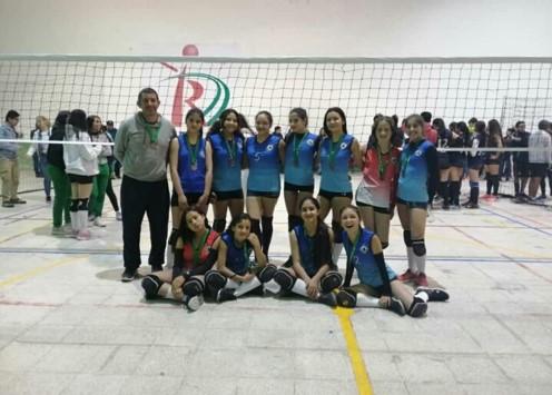 Voleibol1.3